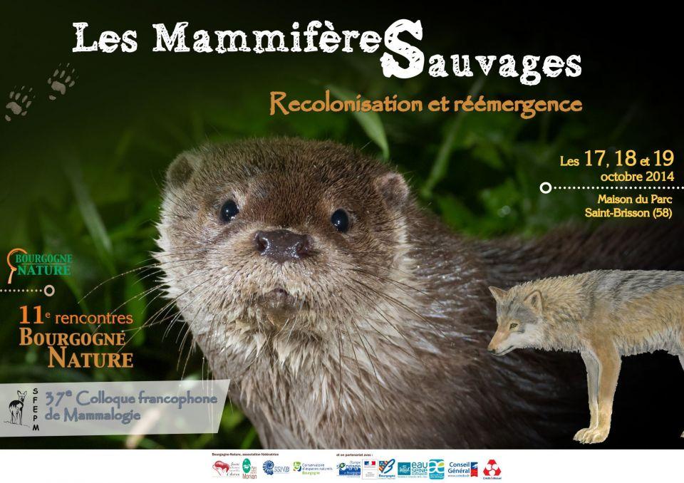 Bilan de la recolonisation de la Loutre en Bretagne